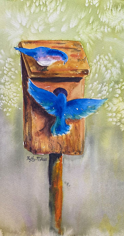 BlueBirdBox.jpg.jpeg