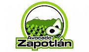 Avocado Zapotlan.jpg