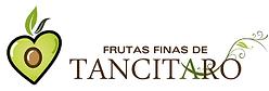 FF Tancitaro.png