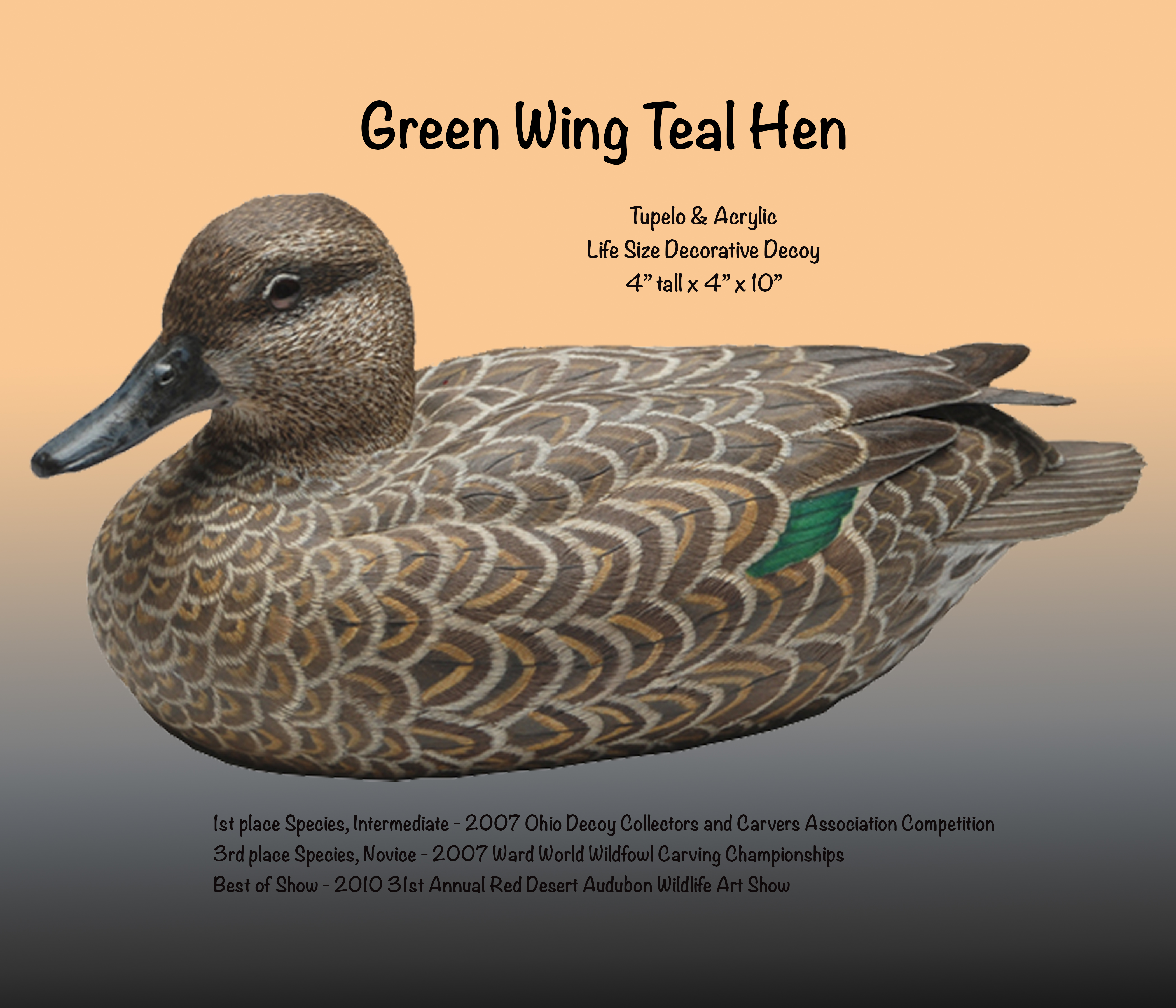 Green Wing Teal Hen