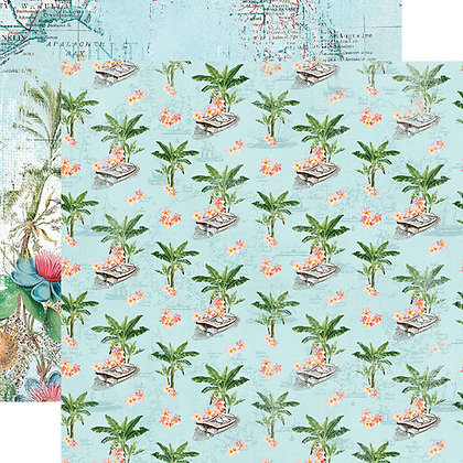 Coastal Tropical Life