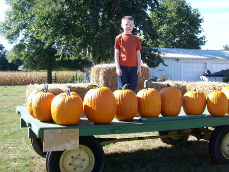 It's The Great Pumpkin At Stanton Road Pumpkin Patch