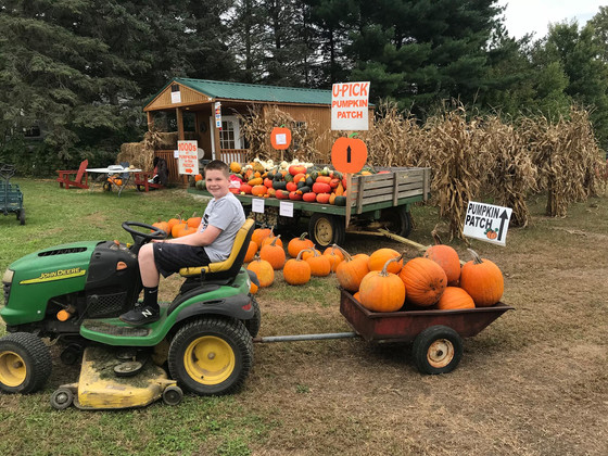 Celebrate Autumn At The Stanton Road Pumpkin Patch