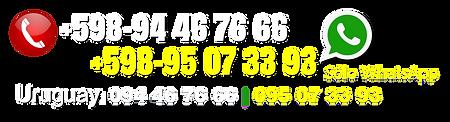Teléfonos para WebSite de SAM 2.png