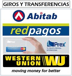 GIROS Y TRANSFERENCIAS.png