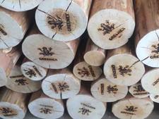 Необычные дрова
