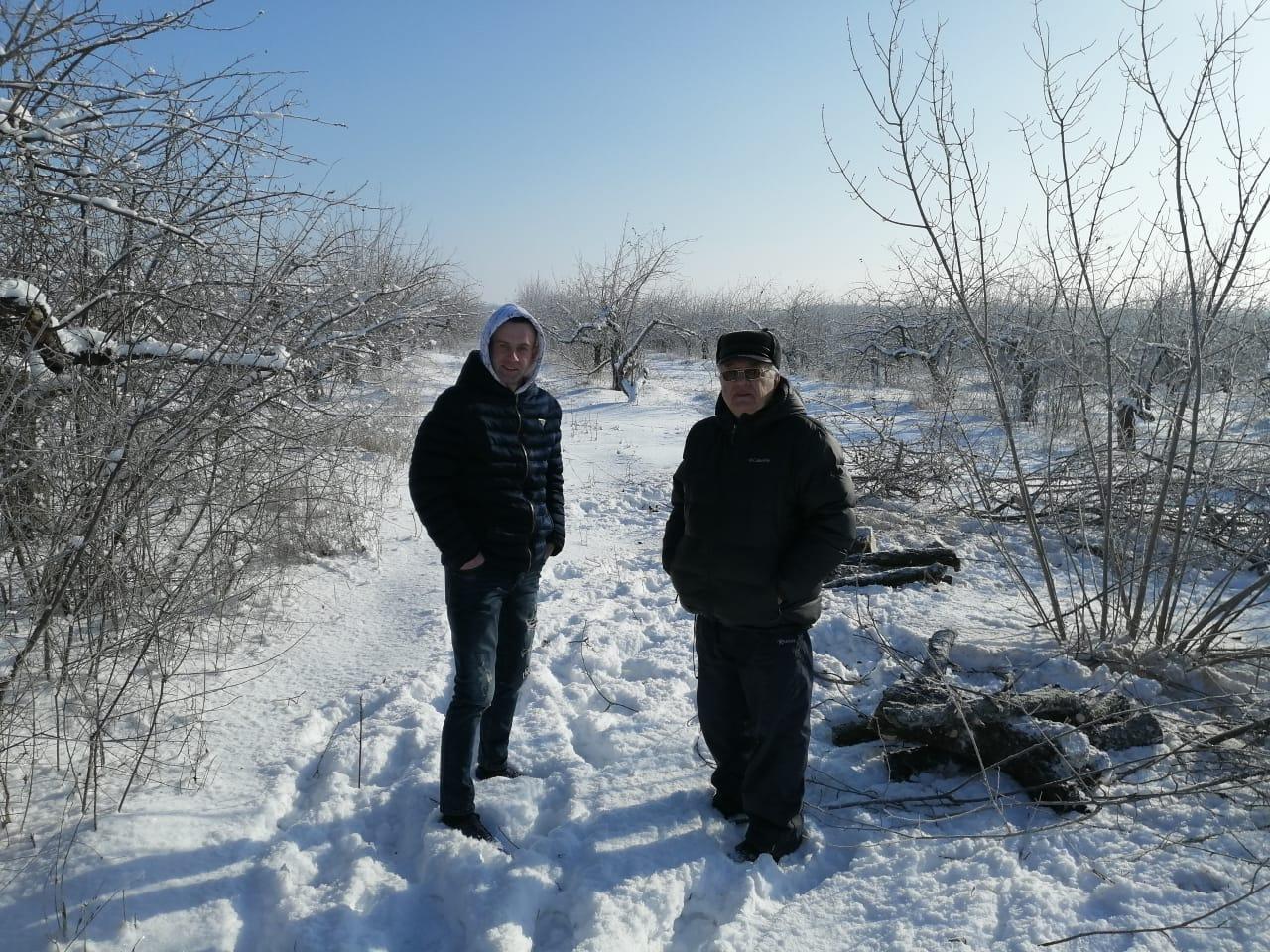 Яблоневые дрова высшего качества из экологически чистого района России