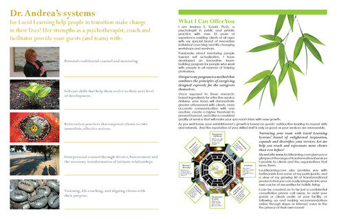 lucid-brochure_manager_Page_2.jpg