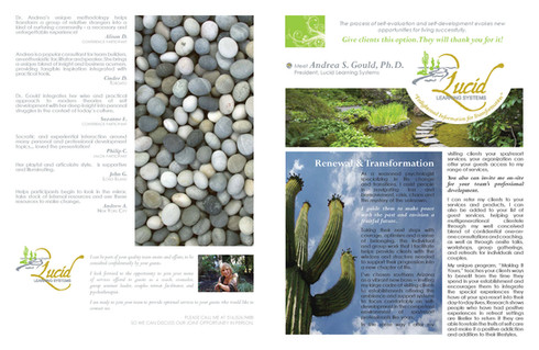 lucid-brochure_manager_Page_1.jpg