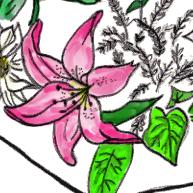 badeeflowersCU1.png