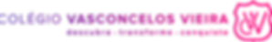 logo cvvArtboard 71_3x.png