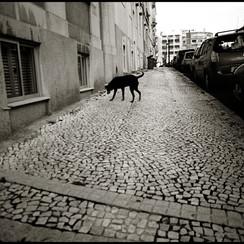 Lisbon, Portugal 2005