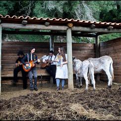 """Promotional photo for """"Donkey"""" Mafra, Portugal 2012"""