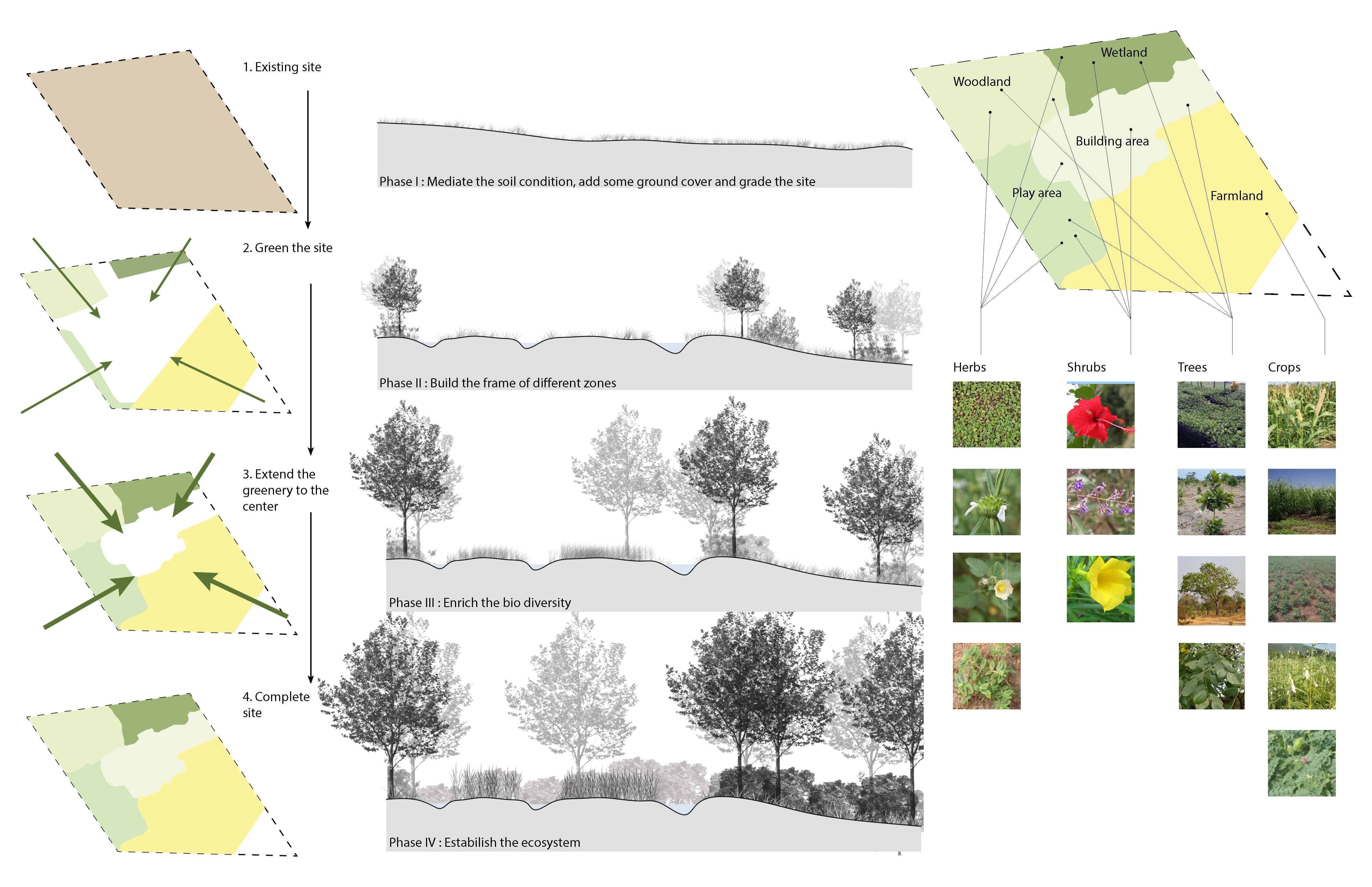Landscape Site Strategy