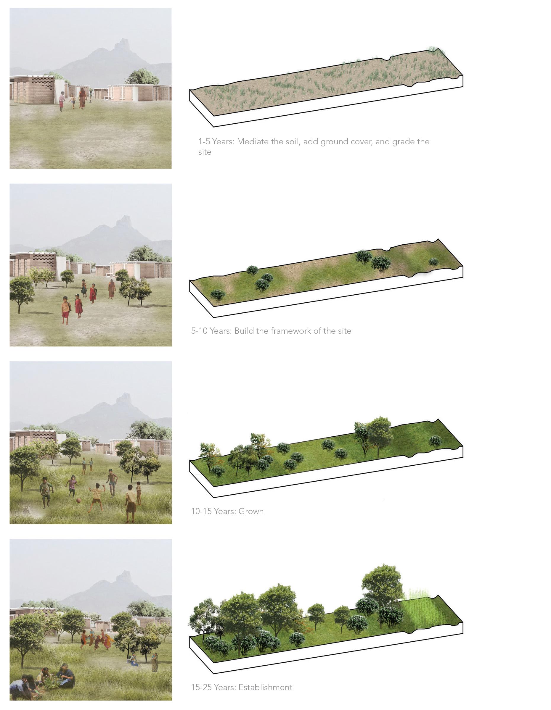 Landscape Phasing Plan