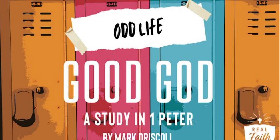 Odd Life Good God Devotional