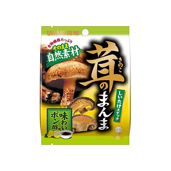 パッケージデザイン 茸のまんま 味わいポン酢味