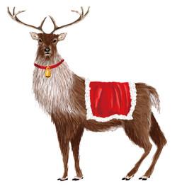 MERRY CHRISTMAS クリスマス2017
