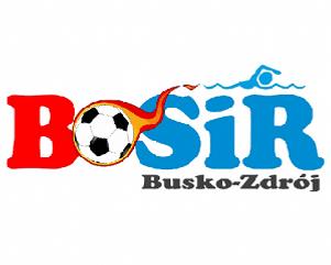 logo_bosir1.png