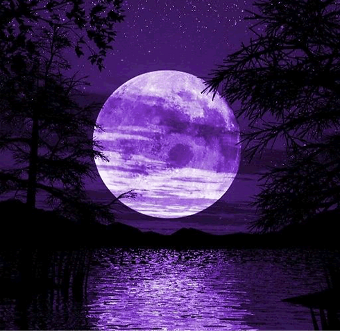 purple%20moon_edited.png