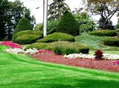 Landscape Maintenance Services offer Fantastic Landscape Design.