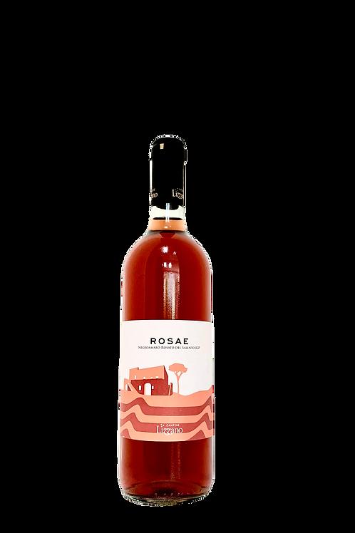 Lizzano,  2016 Rosé ROSAE Rosato Del Salento IGP, Puglia Italy, 750ml