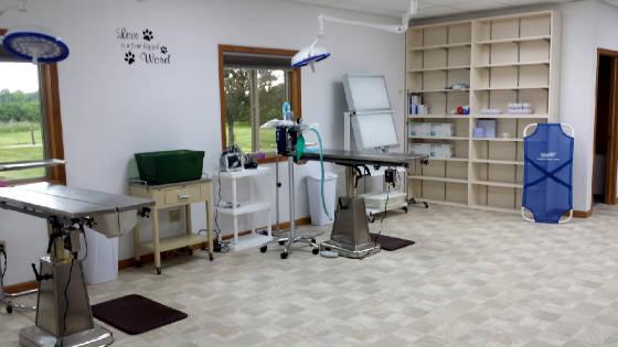 FixaPet Surgery Room