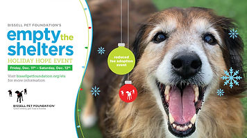 ETS-HolidayHope-Cover-Photo-Dog-Fri-Sat-
