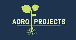 AgroProjects - sólido.png