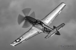 Andrew McKenna P-51