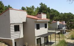Las viviendas y el pinar
