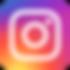 instagram fauveau logo.png