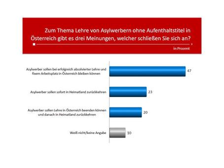 Profil-Umfrage: Lehre für Asylwerber