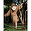 Thumbnail: Roupão de Banho - Macaca Polaca