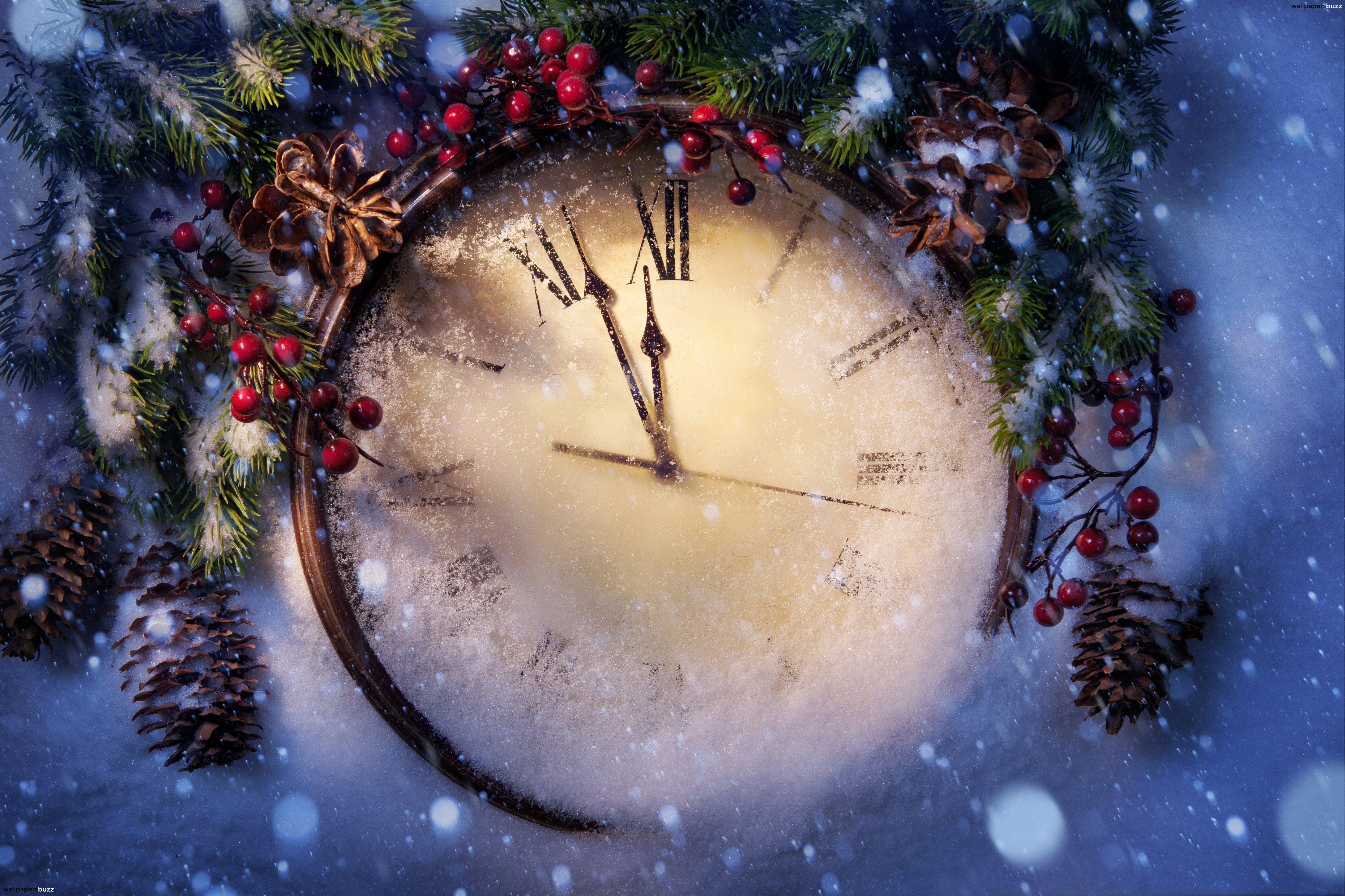 Новый год в Лебедево