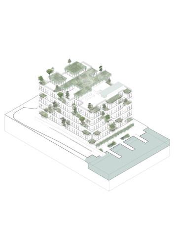 axo-edificio-vegetajpg