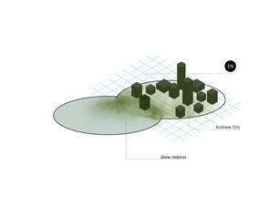esquema-ecotono-fase-2jpg