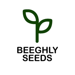Beeghly Seeds