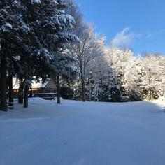 winter in northwoods