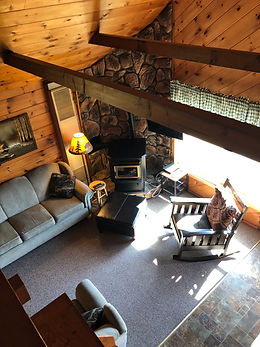New cabin living room photo
