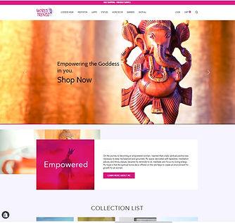 new website homepage after park forest web designer