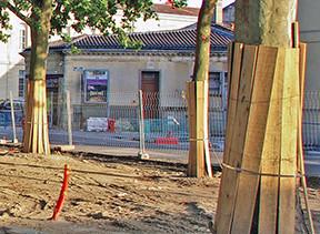 Protection des arbres pendant le chantier