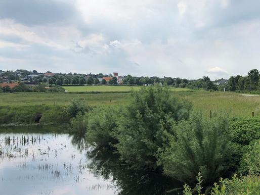 Naturen i byen - byen i naturen