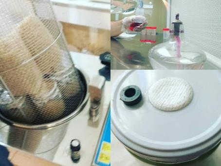 Lo que todo aficionado a la micología debe saber sobre Esterilización (Parte I)
