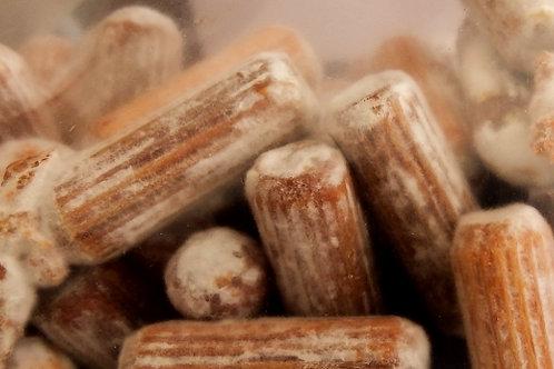 Micelios de Shiitake en Tarugo - Bolsa de 500 unidades
