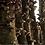 Thumbnail: Micelios de Shiitake en Tarugo - Bolsa de 500 unidades