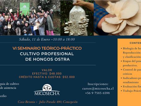 Confirmado el primero de los 2 seminarios anuales de Micosecha para enero 2020