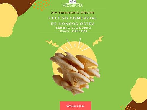 SEMINARIO OSTRA ONLINE  - Producción Comercial - XIV Ciclo