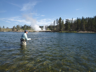 Its August - Hit the Yellowstone and Flat Creek for a change