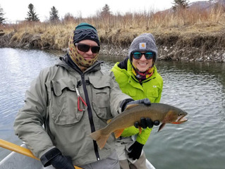 The Best Dry Fly Fishing of the Year So Far